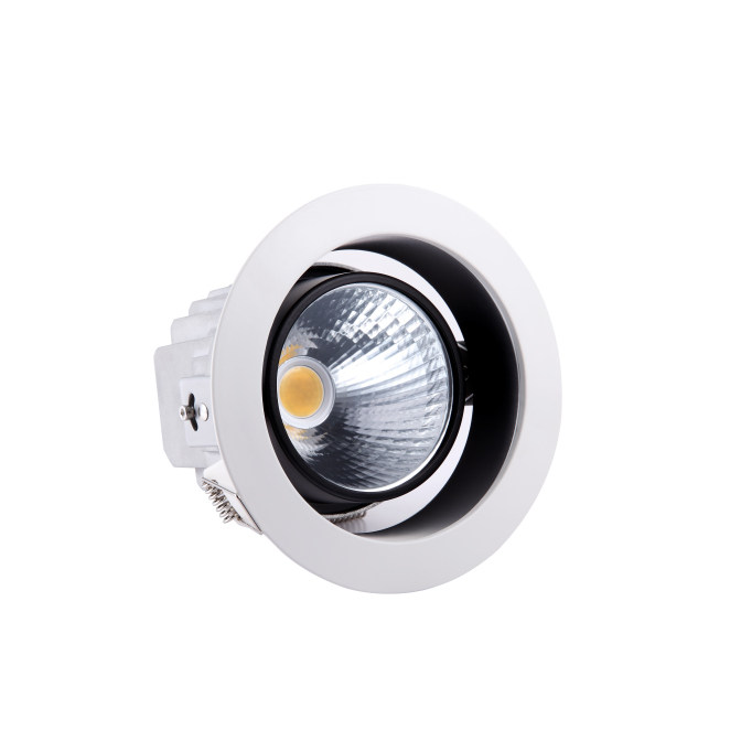 LED Downlight<br />6 Inch TLA203-04<br />24W warm wit